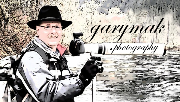 GaryMak Photography Cartoon No36 F